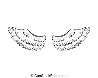 wings., 白, ベクトル, 背景, イラスト