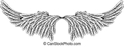 Wings - An illustration of a pair of wings like angel or...