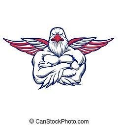 wings., espalhar, falcão
