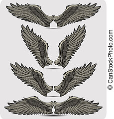 Wings set. Vector illustration