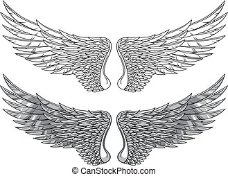 Wings - Vector wings