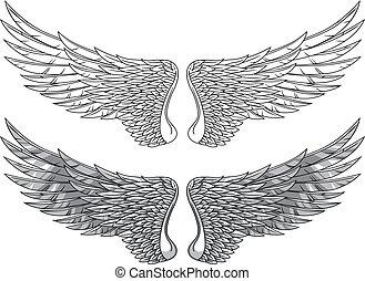 Wings - Vector wings