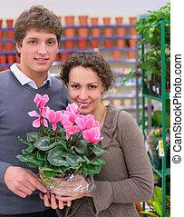 winkel, paar, bloem pot