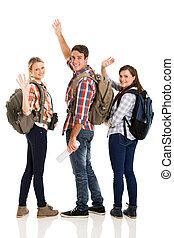 winkende , gruppe, junger, verabschiedung, touristen