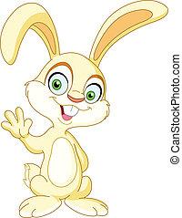 winkende , kaninchen