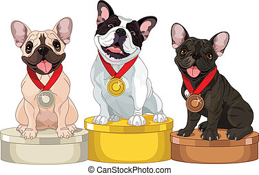 winnaars, van, dog, competitie