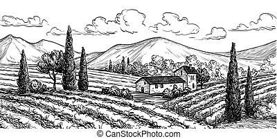 winnica, pociągnięty, ręka, krajobraz.
