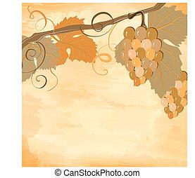 winorośl, grunge
