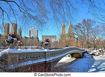 winter., 橋梁, 公園, 中央, 弓