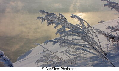Winter 6 - Winter landscape with sun. Snow-covered branch