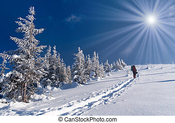 winter adventure in the Carpathian mountains
