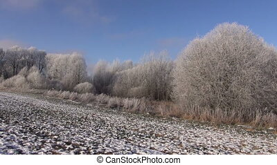 winter agriculture landscape - beautiful winter agriculture...