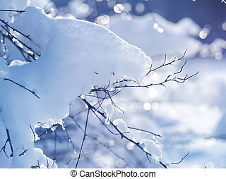 Winter art design. Snow
