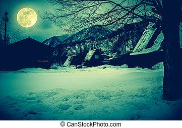 winter., asciutto, pieno, silhouette, moon., neve, albero, coperto, suolo