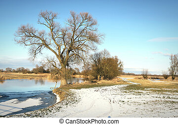 winter at Havel river in Havelland (Brandenburg Germany)