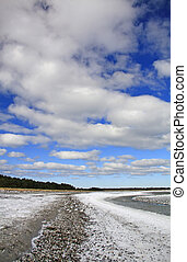 Winter at the Baltic Sea, near Prerow, Darss, Mecklenburg-West Pomerania, Germany