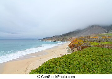 winter at the beach, highway 1