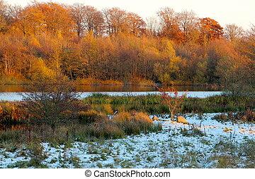 Winter at the lake after snowfall