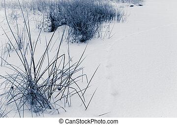Winter background at lake no. 1