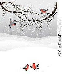 Winter background with birds bullfinch