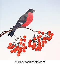 Winter background with bullfinch