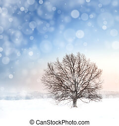 winter bare tree and snowfall - winter landscape with bare...