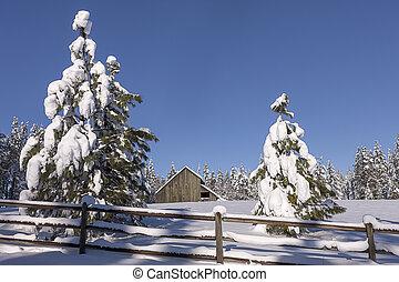 Winter barnyard scene in Idaho.
