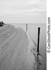 Winter Beach in Black and White