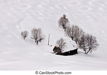 winter beauty with snow and trees and little cottage