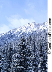 winter, berg