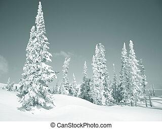 winter, berge