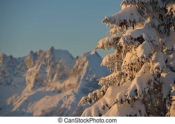 winter, berglandschaft