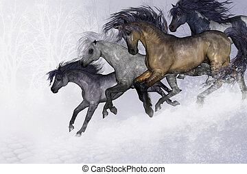 WINTER BLISS - Four beautiful wild horses run down a slope...