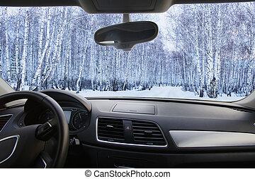 winter, bos, in, de, cabine, auto's