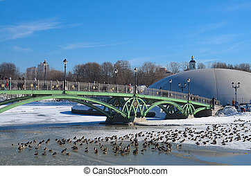Winter, bridge and ducks