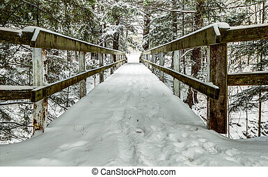 Snow covered wooden bridge over a forested ravine.