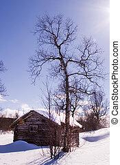 Winter Cabin - A winter cabin in winter scene
