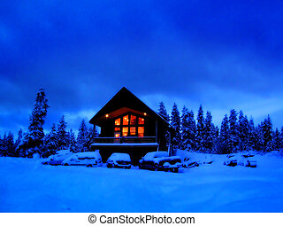Winter Cabin - Cabin in stand of pine trees covered in snow ...