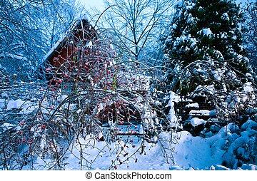 winter cabin in scene ice
