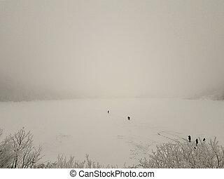winter., camminare, morskie, persone, congelato, lago isola, ice., spesso, oko