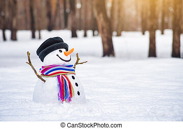 Winter card with a snowman in a city park