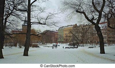 Winter city park. Nature.