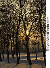 (winter), Coucher soleil