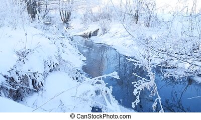 winter creek in the forest snow, frozen branches of landscape tree nature