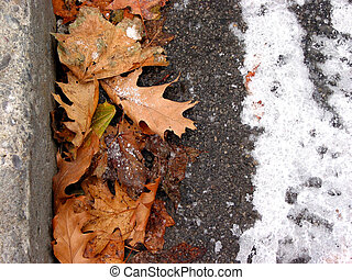 Winter curb - Frozen fall oak leaves and ice at the curb