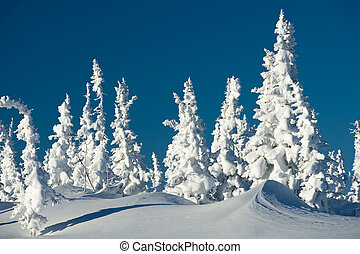 Photo of wonderful scene somewhere in mountains or winter resort