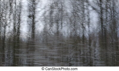 Winter Driving - Winter Forest - Driving through a winter...