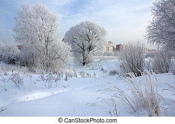 winter, eisig, tag