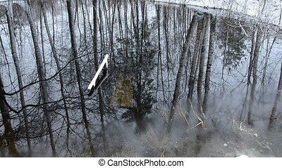 winter end pond with water and tree