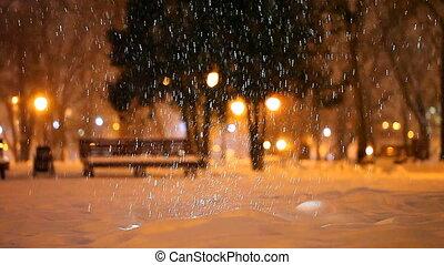 winter evening in city park